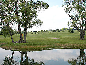 Southern Meadows Golf Course